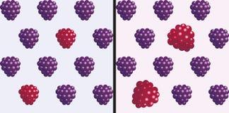 Framboises et mûres Modèle sans couture de l'objet 3D sur le fond clair Photographie stock libre de droits