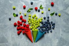 Framboises, myrtilles et raisins juteux dans des cônes de gaufre images libres de droits