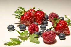 Framboises, myrtilles, fraises sur le fond blanc Image stock