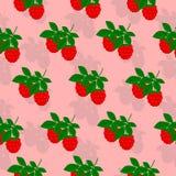 Framboises pattern1 sans couture Photo stock