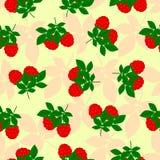 Framboises pattern2 sans couture Photographie stock