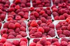 Framboises rouges dans des boîtes au marché local de ferme photo libre de droits