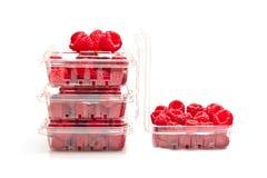 Framboises rouges dans des récipients en plastique de fruit Photographie stock libre de droits