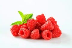 Framboises rouges fraîches image stock
