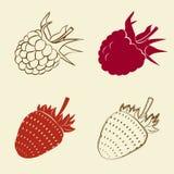 Framboos en aardbeipictogrammen vector illustratie