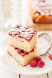 Framboos en Yoghurtcake Royalty-vrije Stock Afbeeldingen