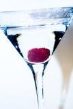 Framboos martini Stock Fotografie