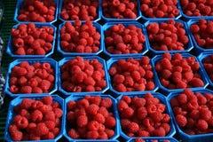 Framboos op markt Stock Fotografie