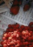 Frambozen en aardbeien op krant Royalty-vrije Stock Afbeelding