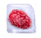 Frambuesa congelada en cubo de hielo foto de archivo libre de regalías