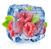 Frambuesa en hielo con descensos fotografía de archivo libre de regalías