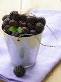 Frambuesa negra madura orgánica de la baya (zarzamora) fotos de archivo