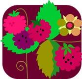 Frambuesa y flores con el fondo colorido Foto de archivo