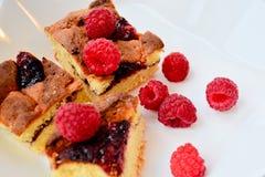 Frambuesa y pedazos de empanada en el plato blanco, visión macra Imagen de archivo
