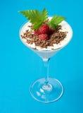 Frambuesas, chocolate y menta con el yogur, leche, requesón en un vidrio de martini Postre delicioso y brillante Imagen de archivo libre de regalías