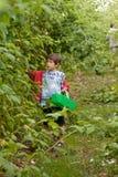 Frambuesas de la cosecha del muchacho Fotografía de archivo