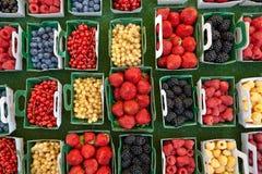 Frambuesas de las zarzamoras de las fresas de las pasas en pequeñas cajas Imágenes de archivo libres de regalías