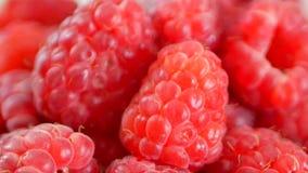 Frambuesas frescas y dulces almacen de video