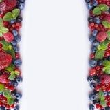 Frambuesas maduras, arándanos, grosellas negras y pasas rojas Imagen de archivo libre de regalías