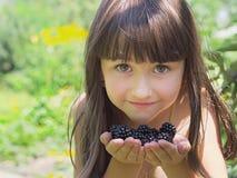 Frambuesas negras Imagen de archivo libre de regalías