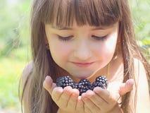 Frambuesas negras Fotos de archivo libres de regalías