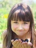 Frambuesas negras Foto de archivo