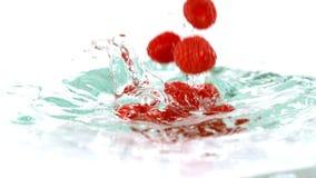 Frambuesas que caen en el agua almacen de video
