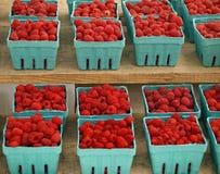 Frambuesas rojas Imagen de archivo