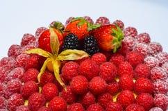 Frambuesas y empanada frescas de las fresas Foto de archivo
