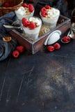 Frambuesas y postre helado del pudín del chia del yogur Imagenes de archivo
