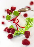 Frambuesas y yogur o crema coagulada fotografía de archivo