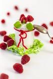 Frambuesas y yogur o crema coagulada foto de archivo libre de regalías