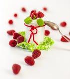 Frambuesas y yogur o crema coagulada imágenes de archivo libres de regalías