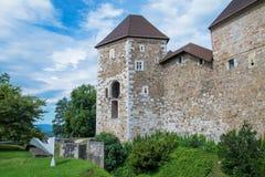 Framdel av den Ljubljana slotten med statyn, Slovenien Arkivfoto