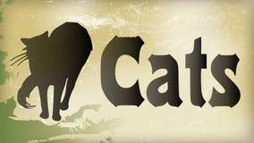 Framdel för svart katt Royaltyfria Bilder