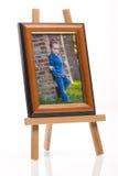 Frame 1 van de foto Stock Afbeeldingen