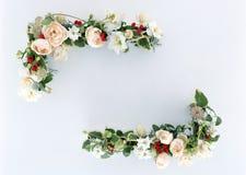 Frame-12 floral Fotos de Stock
