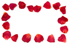 Frame. From red rose petals Royalty Free Stock Image