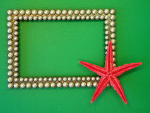 Frame. Beautiful frame and red fish star isolated on green bakground royalty free stock images