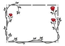 Frame. Made out of roses Stock Image