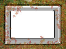Frame. In silver plate with water and leaves royalty free stock photos