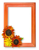 Frame with 3 flowers Royalty Free Stock Photo