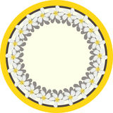 Frame. Vector illustration -white flowers in the circle Stock Image