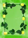 Frame 6 de Rosa Imagens de Stock Royalty Free