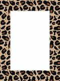 frame in animal pattern Royalty Free Stock Images