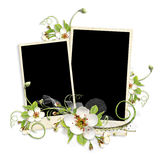 Frame with apple tree flowers Royalty Free Stock Images