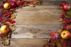 Frame of apples, acorns, berries and fall leaves on dark wooden Stock Photos