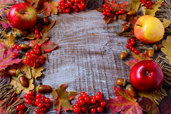 Frame of apples, acorns, berries and fall leaves on the rustic w Royalty Free Stock Images