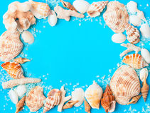 Frame from assorted seashells and corals on blue background royalty free stock photo