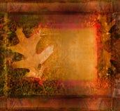 Frame on autumn background Royalty Free Stock Photos